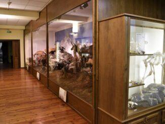 Riapre il Museo naturalistico del fiume Po a Revello