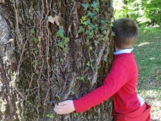 In dialogo con la natura: nasce la Scuola nel Parco